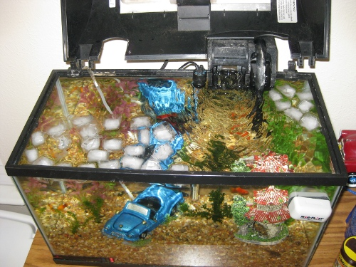 fish_tank_ice_cubes